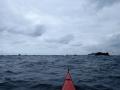 PA170026-17-ile-rouzic-archipel-des-7-iles