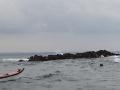 PA170030-17-phoque-gris-archipel-des-7-iles