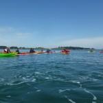 Avec le club de kayak de mer d'Auray dans le Golfe du Morbihan.