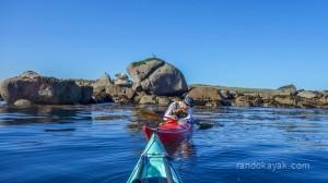Extra, le phoque passe sous l'eau, tout près de mon kayak de mer ! (Crédit photo : Gilbert)