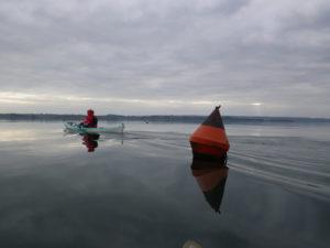 En baie de Daoulas lors de notre Randonnée en kayak de mer dans la plus grande rade de Bretagne.