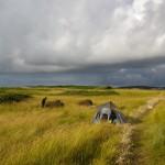 Bivouac dans les herbes folles de l'île Agathon