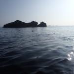 kayaks de mer, un phoque près de l'île de Morgol.