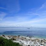 au Sud est de Molène