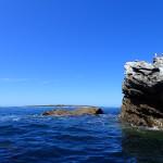 Molène au loin