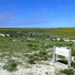 La réserve de chasse et de faune sauvage de Béniguet est une zone de quiétude pour les animaux.