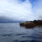 Brest vu de l'île Ronde