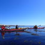 Randonnée en kayak de mer dans l'archipel de Glénan au soleil, par mer lisse comme un miroir