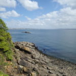 îlot de la Cormorandière vu du sentier