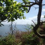l'île Longue au loin