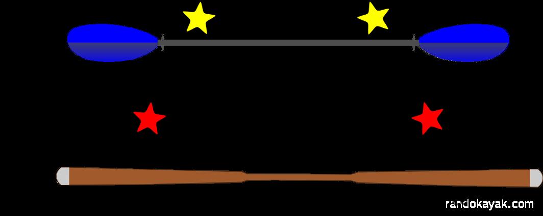 pagaie traditionnelle ou européenne
